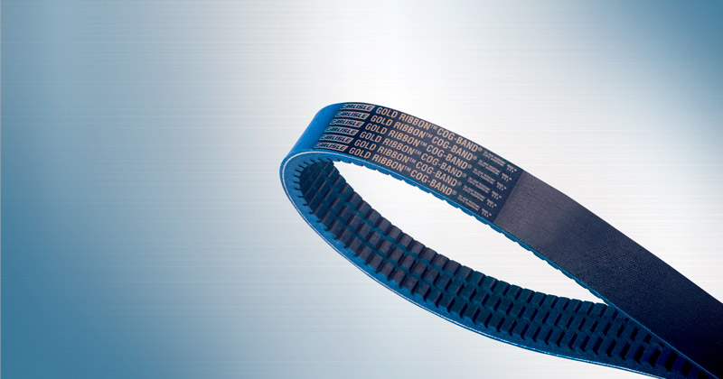Image showing Gold-Ribbon® Cog-Band®ed Belts by Carlisle Belts