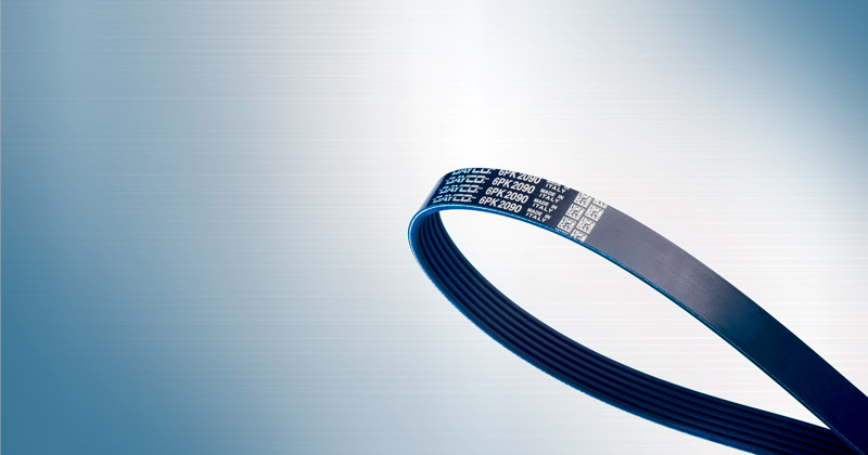 Image showing Ribbed Fan Belts by Dayco Belts