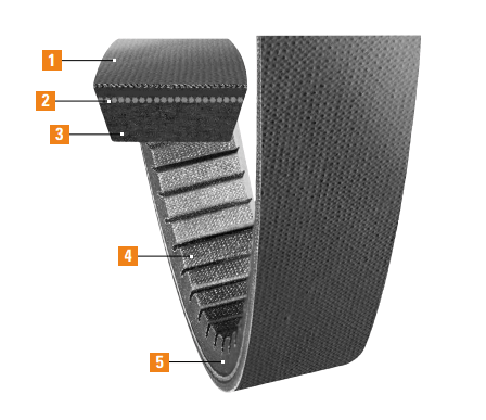 Variable Speed Cog Belt Features